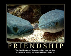 friendship (Mr.  Mark) Tags: christmas blue friends fish face japan aquarium photo fdsflickrtoys funny motivator newyear lips osaka 2008 demotivator 2007 motivational demotivational markboucher
