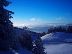 Winter Blues (_Marcel_) Tags: blue schnee winter snow france mountains landscape frankreich berge blau landschaft semnoz travelog top20fav 5photosaday