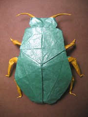 Scarab Beetle (PhillipWest) Tags: insect origami beetle paperfolding papiroflexia scarabbeetle robertlang origamiforum robertjlang tissuefoil