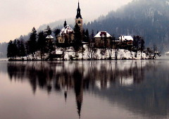 Bled in Slovenia (sara vilbergs) Tags: trees snow reflection nature top20favorites mirror 100v10f slovenia bled top20hallfame topphotoblog