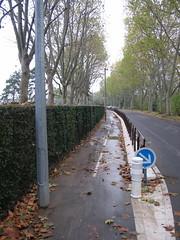 Ile de Puteaux, piste cyclable (Grbert) Tags: pistecyclable ile france puteaux