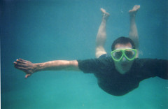 Gerald, submerged (danbri) Tags: w3c swimming hawaii underwater turtle gerald w3t