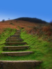 Cliff Path - Jersey (jerseyimage) Tags: travel november winter cliff grass outside islands day britain path walk steps explore jersey cliffpath channelislands channel channelisles islandofjersey jerseyimage