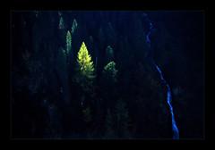 Shadow (Walter Quirtmair) Tags: film austria october thebest2005 ötztal tyrol swq takenbywalter eos300 pfevergreen primevalforestgroups pfwaterfall