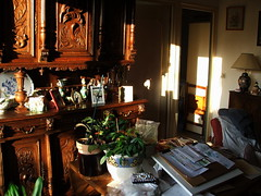 living room (averages) Tags: morning light home living room houseplants events ideas memories aunt uncle hesdin pasdecalais france