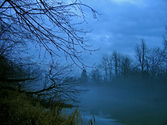 Mysterious River (see what you want to see) Tags: water fog mist earie trees tree grass clouds sky river mysterious ilovenature nature