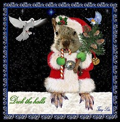 DECK THE HALLS (Terry_Lea) Tags: squirrel squirrels christmascards tbas abigfave