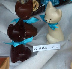 Chocolate cats