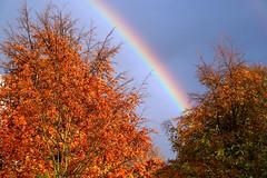 Rainbow (BioMaxPhotos) Tags: iris arcoiris landscape ilovenature 350d rainbow topv333 paisaje arco biomaxi clusius
