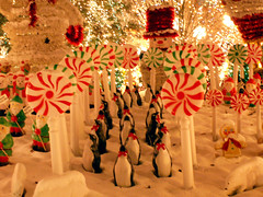 It's Beginning To Look Alot Like Christmas! (Sister72) Tags: penguins lollipops daystillchristmas decorations snow snowman elves display holmdel nj sister72 christmas lovely candyland xmas