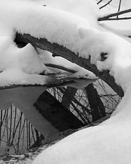 Log (Mike Kitchen) Tags: log reflection snow winter bw