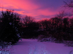 The Path in Waltham (KPhilly40) Tags: pink trees sunset sky favorite snow topf25 colors topv111 tag3 taggedout wow ma interestingness topv555 topv333 tag2 tag1 top20winter purple topv999 topv444 interestingness1 100v10fav topv222 topv777 topv666 waltham topv888 cotcmostfavorites