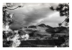 solitude (cassandi) Tags: by nationalpark colorado solitude with x d76 infrared rockymountain longspeak nikonn90s kodakhie agfaglossy 8x12print sandiwright cassandrawright