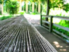 distant arrangement (justneal) Tags: bridge rail wood texture grain perspective vanishingpoint chapel splinter tag1 tag2 tag3 taggedout 15fav