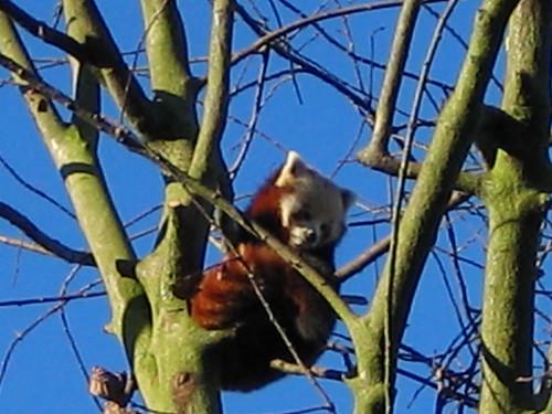 Birmingham Nature Centre - December 2005