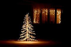 Christmas on MyBlock (kpishdadi) Tags: christmas xmas lights tree christmastree snow afterdark window winter christmaslights