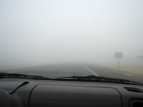 Tule Fog (photo credit: Flickr)
