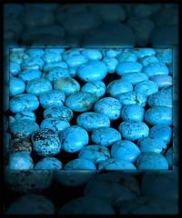Turkoaz (Yorick...) Tags: blue color topv111 wonderful wonder thailand asia graphic gutentag turquoise 100v10fav bleu yorick flashy 0x11556f turkoaz