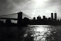 Downtown from Brooklyn (dM.nyc) Tags: world new york nyc bridge brooklyn downtown manhattan center wtc trade roseannetookthis