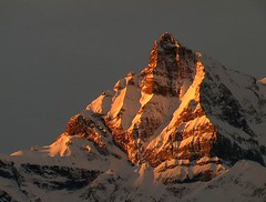 """Dent Du Midi""- February 7:50am (mdshivers) Tags: life snow mountains alps cold beautiful rock switzerland vaud yourfav labri huemoz dentdumidi calendarshot"