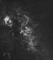 Cygnus in H-Alpha (-mrh) Tags: astrophotography cygnus sbig halpha st2000xme