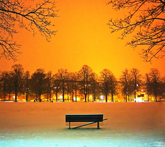 Ciel! (MrUllmi) Tags: park trees winter sky orange snow night wow catchycolors bench cool topf75 lovely1 topv1111 hiver topc50 fv5 lausanne loveit ciel arbres 50100fav neige nuit parc banc cotcmostfavorited 999v9f 1000v40f 123f50