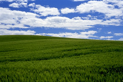 Sky and Clouds (bentilden) Tags: blue usa green beautiful topv111 clouds wow washingtonstate palouse