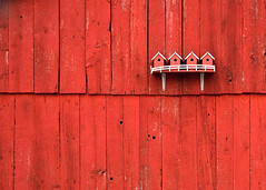 Bird Houses on a Red Barn (Todd Klassy) Tags: wood old roof red summer house color bird texture love home nature wisconsin barn yard rural america garden outdoors design spring boards backyard little sweet farm unique wildlife small country farming rustic egg shed feather entrance seed birdhouse nobody row structure environment farmer charming agriculture dairy frontyard plank wi redbarn valentinesday avian protect oldfashioned nestbox roost birdhouses tweet inarow horizonal stoughton stockphotography rurallife colorimage ruralscene barnboards buildingexterior nonurbanscene stoughtonwisconsin ruralwisconsin wisconsinphotographer descriptivecolor sideofbarn toddklassy wisconsinlandscapephotographer