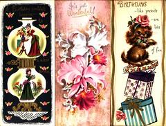 Tall Cards 1 (A.Currell) Tags: orchid cute paper puppy ebay card kawaii era eames greeting eamesera