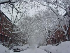 Bergen Street - Between Bond & Hoyt (jmehre) Tags: nyc winter white snow brooklyn snowstorm blizzard boerumhill brooklynapartments jaimehaire blizzard2006 blizzardnyc blizzard2006nyc