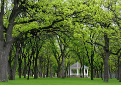 Island Park Gazebo, summer (Fargo, North Dakota) (post.ndakota) Tags: trees summer green parks explore northdakota fargo 4seasons vivaldi gazebos interestingness242 i500 zip58103