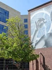 Asymmetrical tree (Lorianne DiSabato) Tags: streetart college boston campus ma mural nu massachusetts northeastern elmac northeasternuniveristy