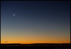 Anochecer en aeropuerto de Roca con Luna y Venus