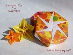 A few classics ….. (esli24) Tags: flower origami carambola tomokofuse origamibox papierfalten carmensprung esli24 ilsez