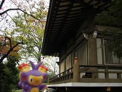 Ambipom in Kasukabe, Saitama 11 (Kasadera) Tags: toys figure pokemon pokmon  kasukabe   pokemonkids  ambipom     ambidiffel capidextre
