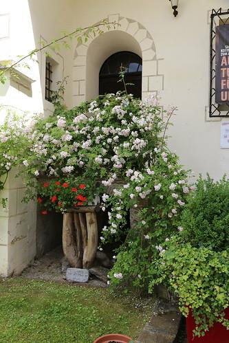 2015 06 26 Austria - Carinzia - Strassburg_1336