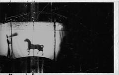 Mr. Carousel (P. Correia) Tags: portugal carousel sines 2012 pcorreia teatrodomar noiserv iphone3g inspiredeye28
