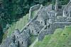 Peru-0735.jpg (winslowdl) Tags: wayna winaywayna wiñay