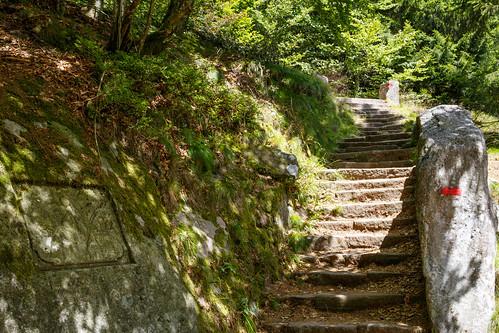 L'escalier de l'Empereur