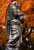 """Cincinnati – Spring Grove Cemetery & Arboretum """"Angel In Autumn"""" (David Paul Ohmer) Tags: ohio cincinnati spring grove cemetery arboretum springgrovecemetery gravesites burial grounds death spirit soul deceased graveyard conservatory victorian gothic revival national historic landmark adolph strauch cemetary autumn fall foliage tree leaves angel"""