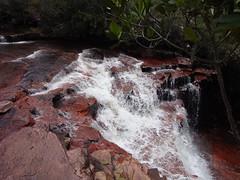 Salto Kawi Merú (Wguayana) Tags: venezuela bolívar gran sabana salto kawi cascada waterfall agua water