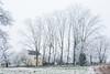 Farmhouse, the Nièvre, January 2017. (serial_snapper) Tags: républiquefrançaise building winter landscape tree nièvredépartement bourgognefranchecomtéregion ciez bourgognefranchecomté france fr