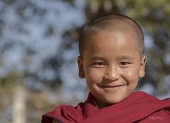 Monday smile (Henry der Mops) Tags: 90a6653 mönch monk nepal namobuddha kloster asien asia lächeln buddhistischeskloster buddha buddhismus mplez henrydermops canoneos7dmarkii religion monasteries buddhistmonasteries mondayface smile
