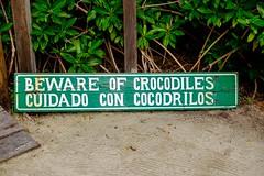 20161224 045 Cozumel Punta Sur Lagoon (scottdm) Tags: 2016 cozumel december ecopark lagoon mexico puntasur quintanaroo winter mx