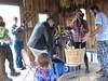 Shelling popcorn, 1904 International Harvestor sheller, Corn Harvest Party October 2015 (Salamander Springs Farm: Susana's Perma-organics) Tags: permaculture berea ky heirloomcornmeal 3sisterscornfield granary cornshelling cornharvesthuskingparty