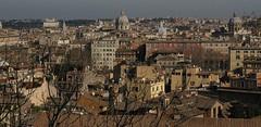 Rome 2010 893