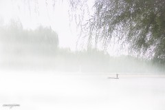 Foggy Morning 888 in The Olympic Green, Beijing, China (zwzzjim) Tags: river olympic foggy morning boat trees beijing china