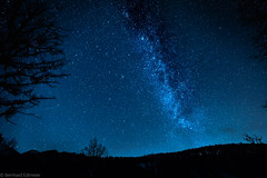 _H1A1204-1 (Bernedti) Tags: astrophotography canon 5dsr milkyway milchstrase sterne stars astro
