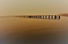 Vergänglichkeit (Wunderlich, Olga) Tags: strelasund wasser vorpommernrügen alterbootssteg natur landschaft landscape nature stralsund spiegelung