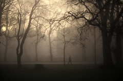 Haar (Tamas Katai) Tags: edinburgh scotland winter meadows fog mist haar morning light moody trees uk city park urban